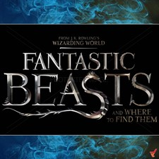 Fantastic Beasts And Where To Find Them Poster D